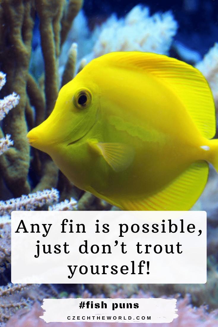 Fin Fish Puns