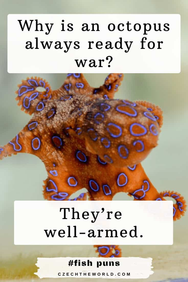 Octopus Puns and Jokes