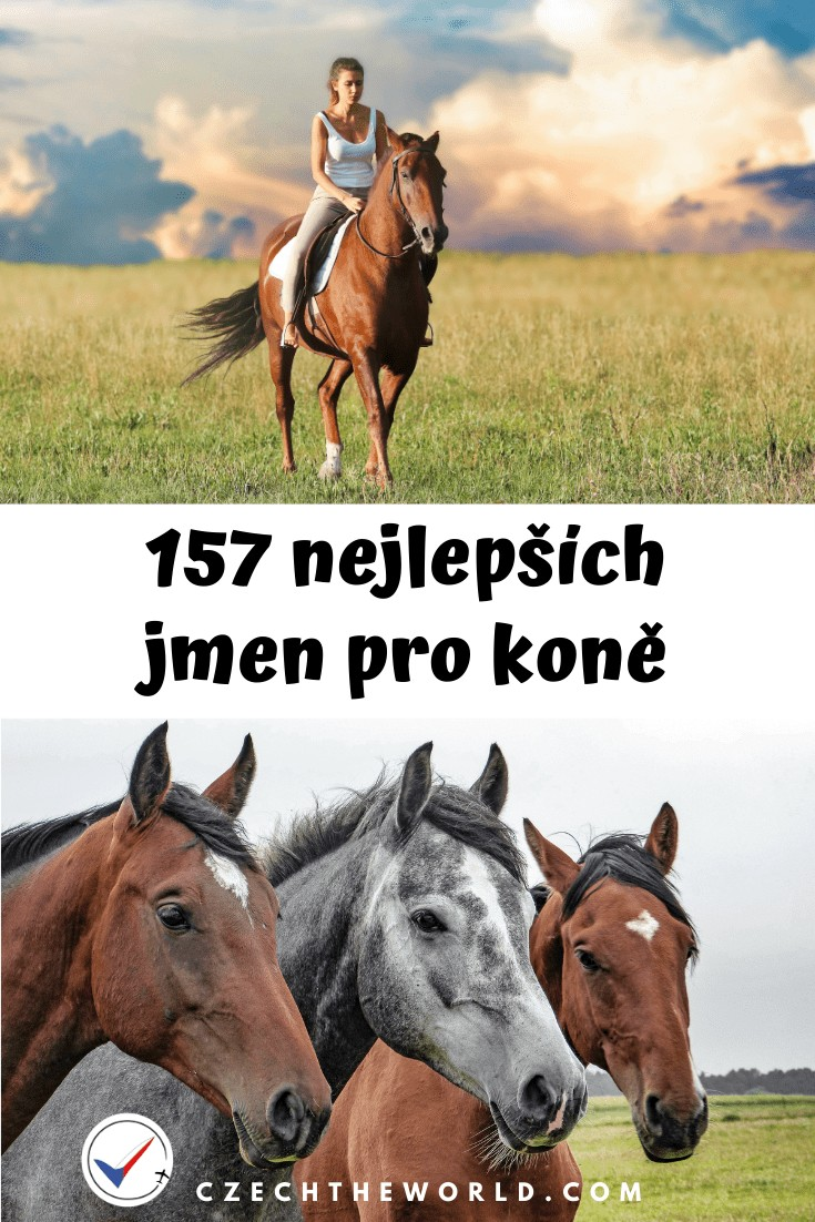 Jména pro koně + koňský kalendář