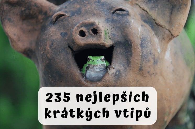 Nejlepší krátké vtipy: 235 vtipů, u kterých se zasmějete 1