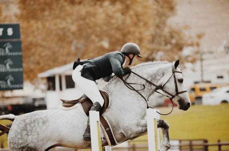 Racing Horse Names