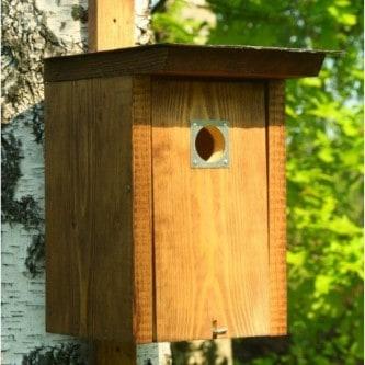 Dárek pro dědu - ptačí budka (1)