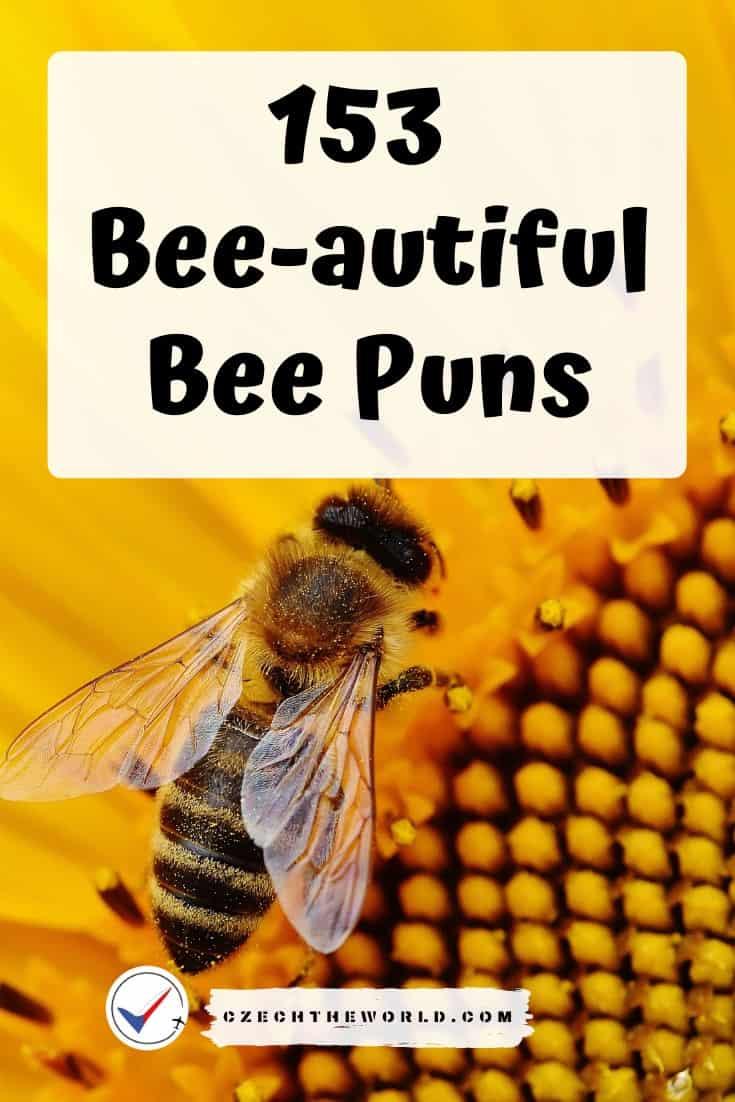 Best Bee Puns