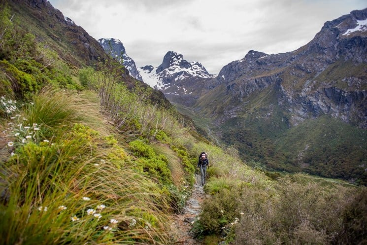 Routeburn track - section to from Lake Mackenzie to the Divide