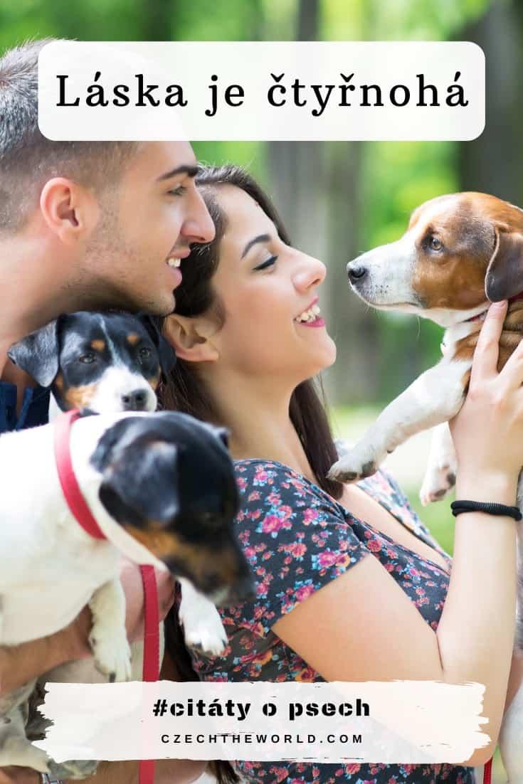 Vtipné citáty o psech - Láska je čtyřnohá