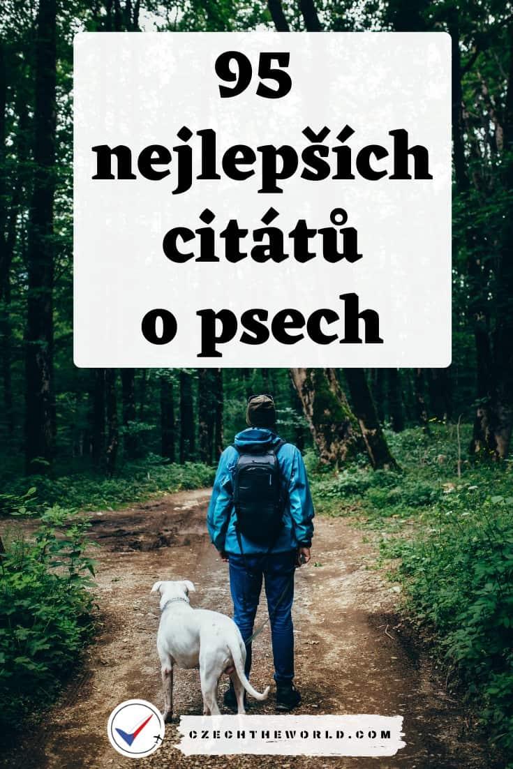 95 nejlepších citátů o psech