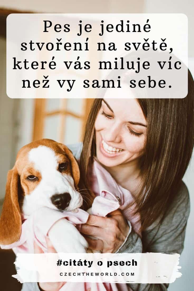 Láska psa k člověku - jednoduše psí láska :)