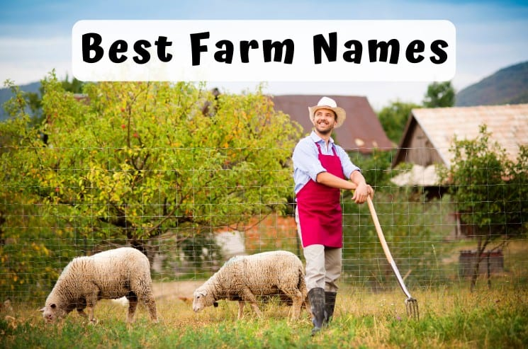 Best Farm Names
