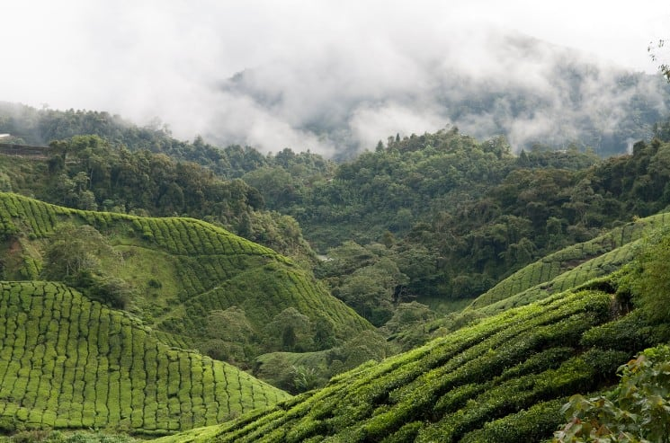 13 Best Places to Visit in Malaysia You Shouldn't Miss 3