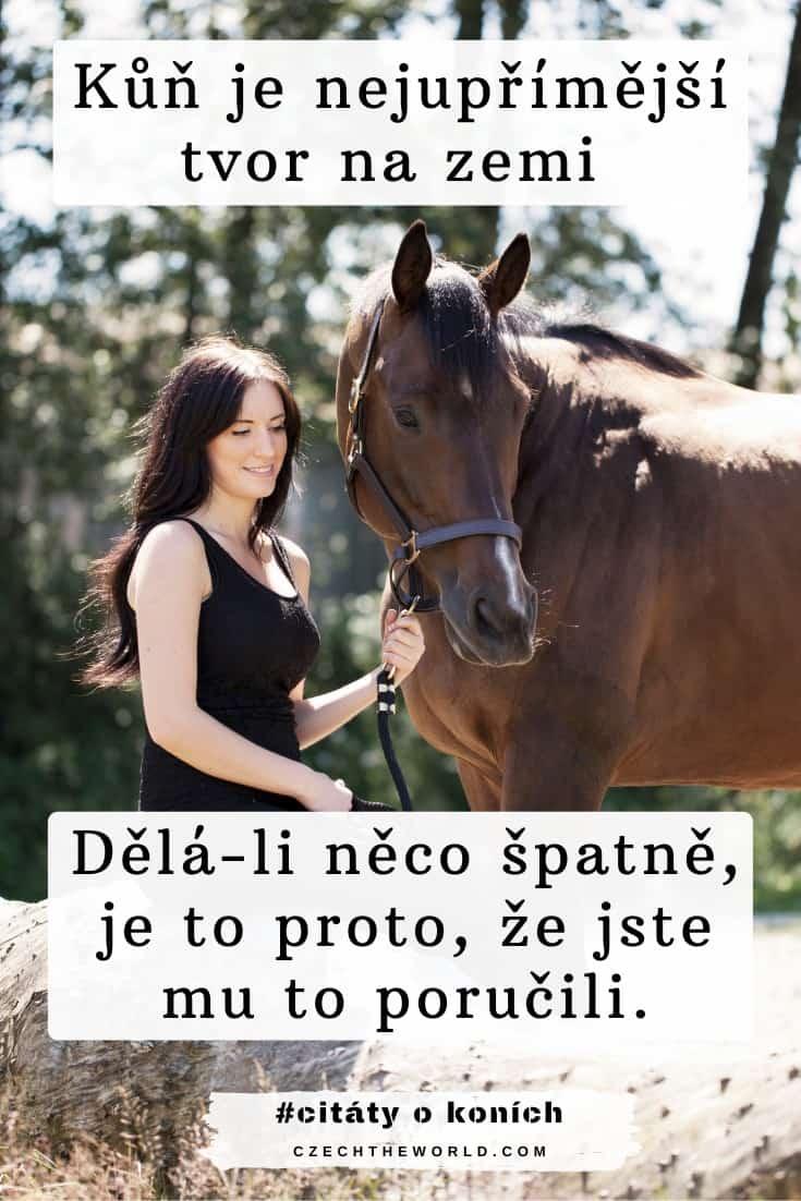 Citáty o koních a lidech