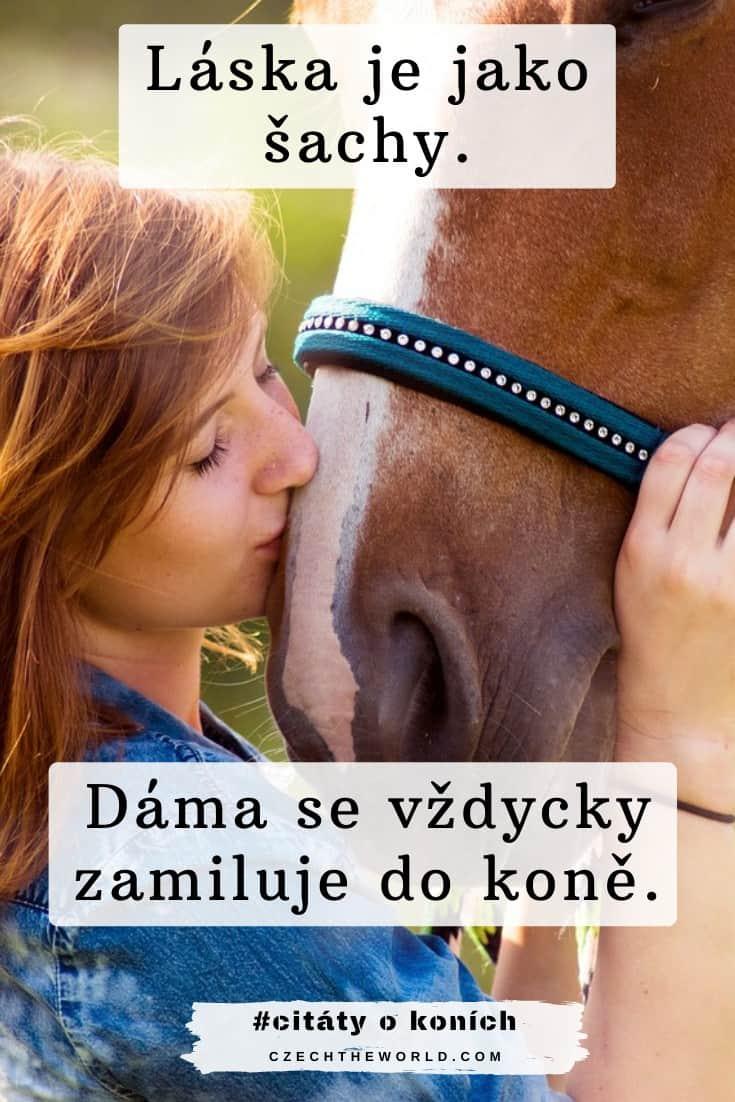 Vtipné citáty o koních