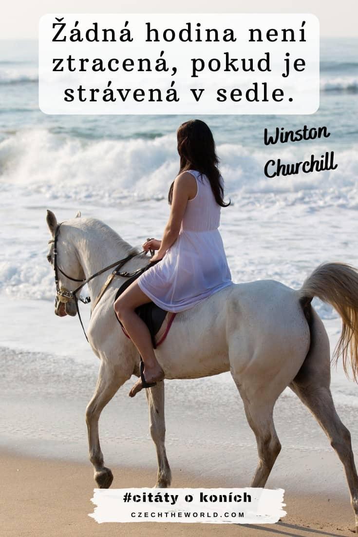 Nejlepší citáty o koních