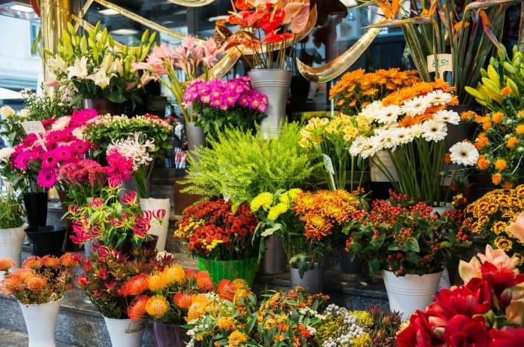 Trendy Flower Shop and Florist Names