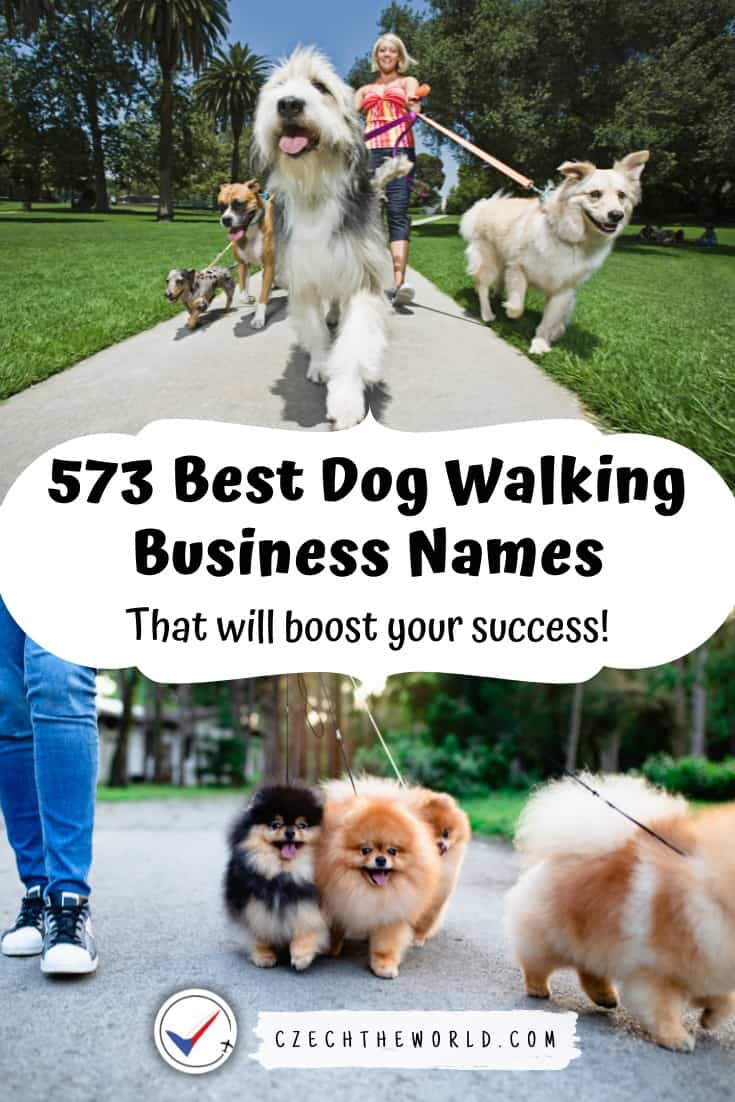 573 Best Dog Walking Business Names to Boost Your Success 1